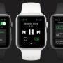 Spotify Apple Watch app now out